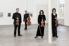 Minguet Quartett 2 (c) Frank Rossbach (2500x1667)